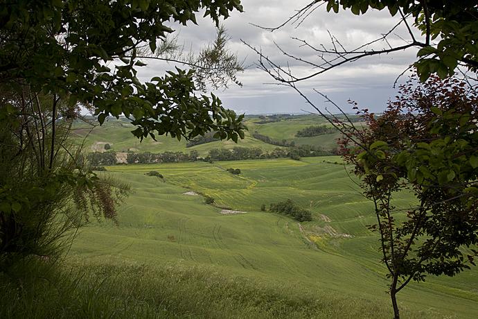 Last Minute tilbud hos Agriturismo Santa Lucia i Siena, Toscana...